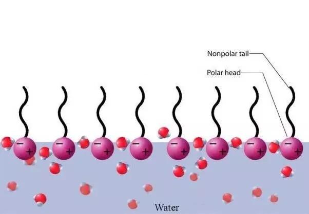 表面活性剂在日常生活中的应用有哪些.webp.jpg